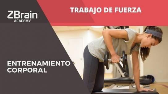 TRABAJO DE FUERZA